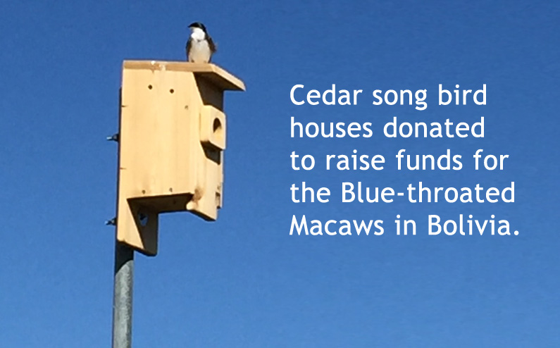 PRC First Canadian Supporter to the Bird Endowment: Saving The Blues